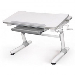 Купить детский стол парту Mealux Evo-kids Duke Evo-501 G